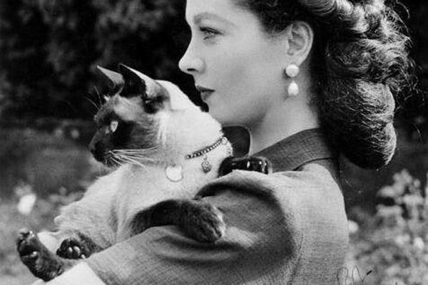 female cat lover vivien leigh with new boy
