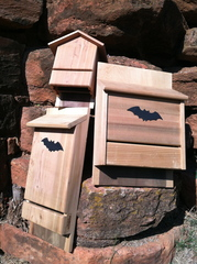 cedar bat house small - Lifestyle