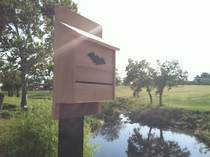 Slanted Roof Bat House - Lifestyle