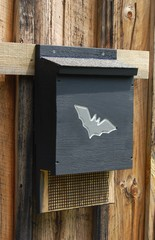 black bat house
