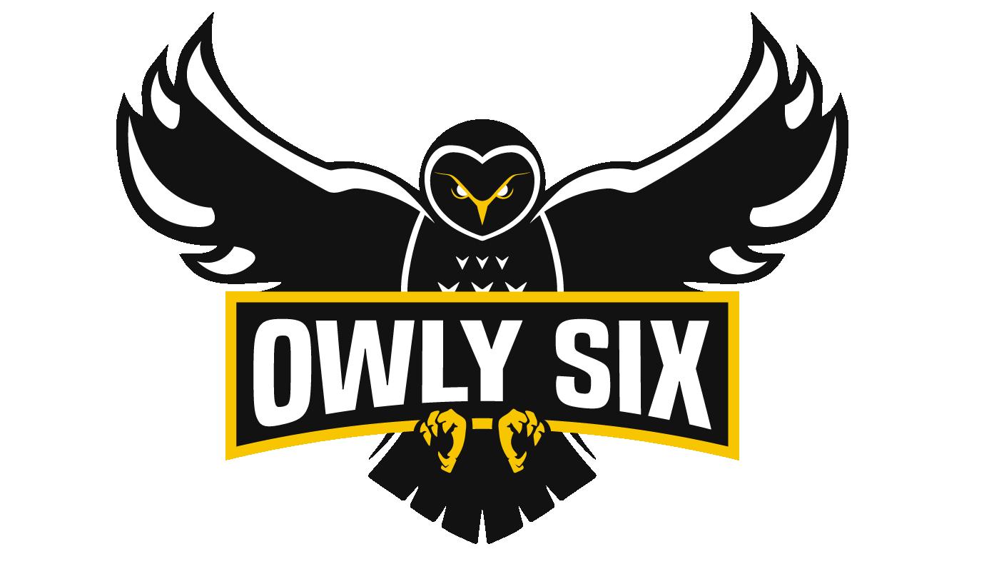Owl-in #9