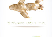 Gravol-ginger-ads-3