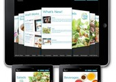Kraft-foodservice-ipod-sales-app2-492x510