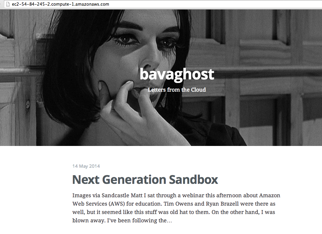the bavaghost up and running, notice the convoluted public URL