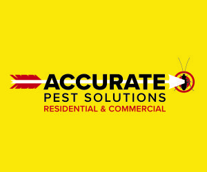 Accurate Pest Solutions