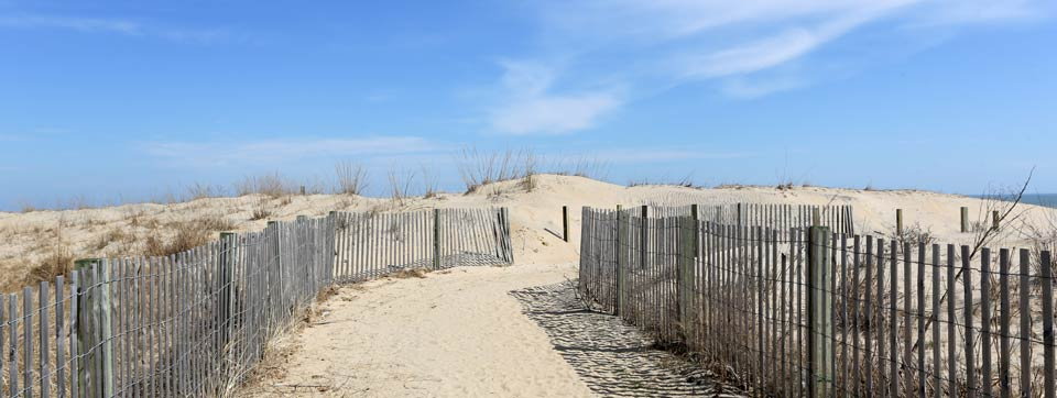Ocean City MD Vacation Rentals