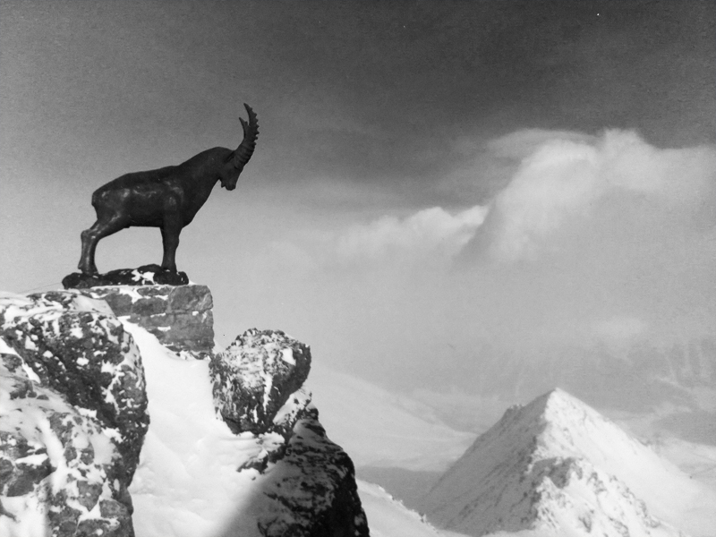 Mountain Goat Sculpture