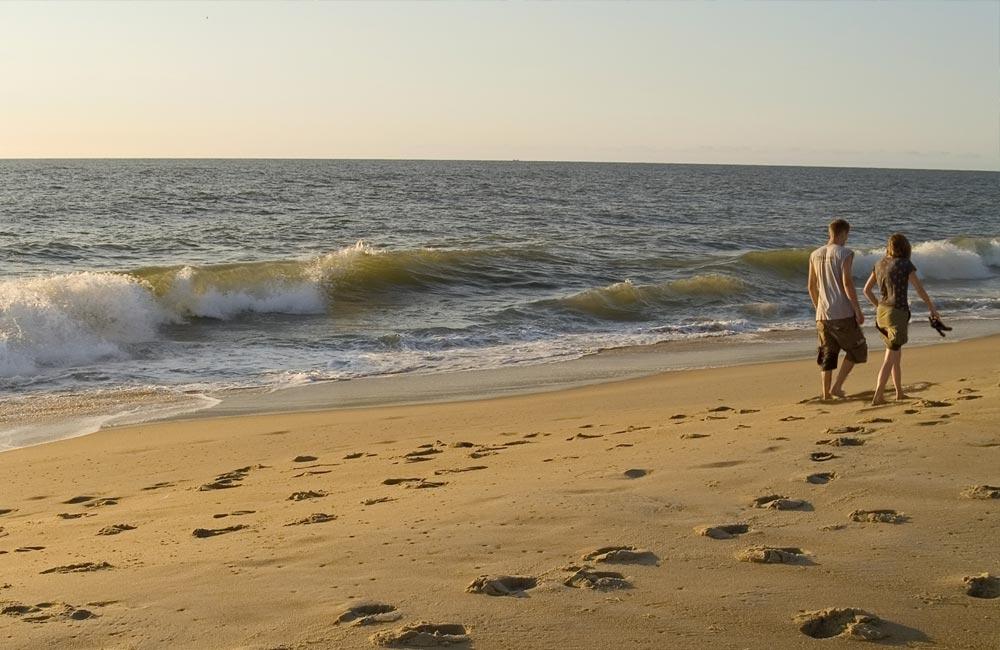 Morning on the OC beach