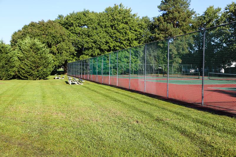 Sport Field freshly cut