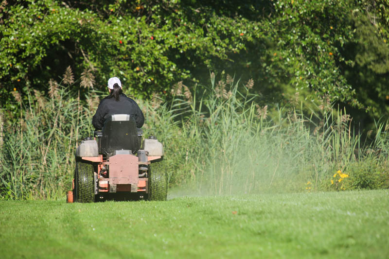 Worker mowing