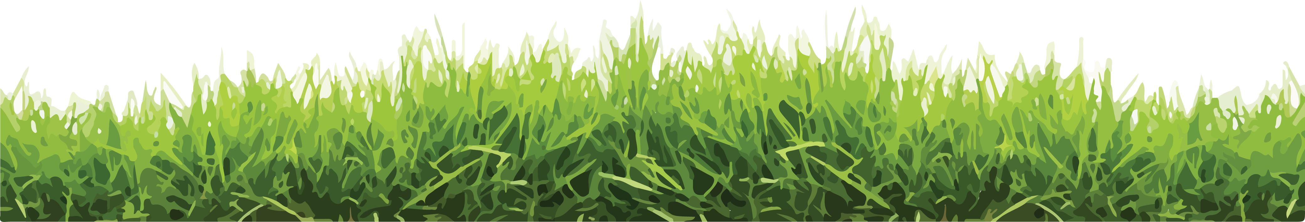 Grass background artwork