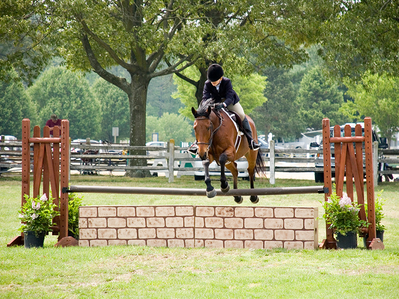 Wicomico Equestrian Center
