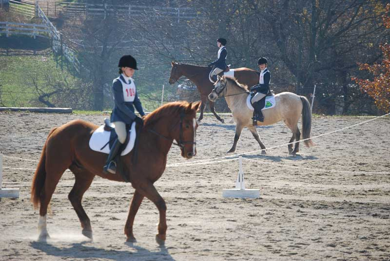 Horseback riders during lessons