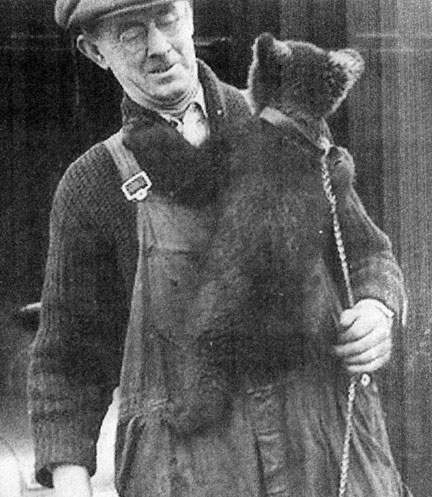 Pete the Bear