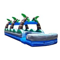 Tropical Double Lane Slip/Slide (35') rentals