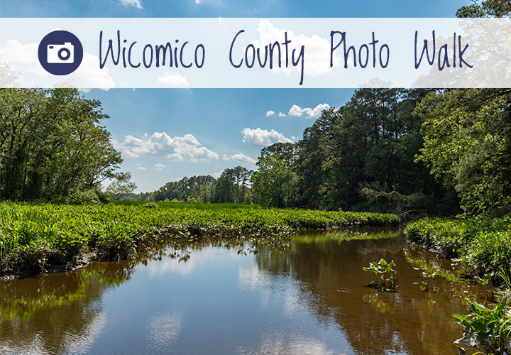 Explore Pemberton Park during Wicomico County's first Photo Walk