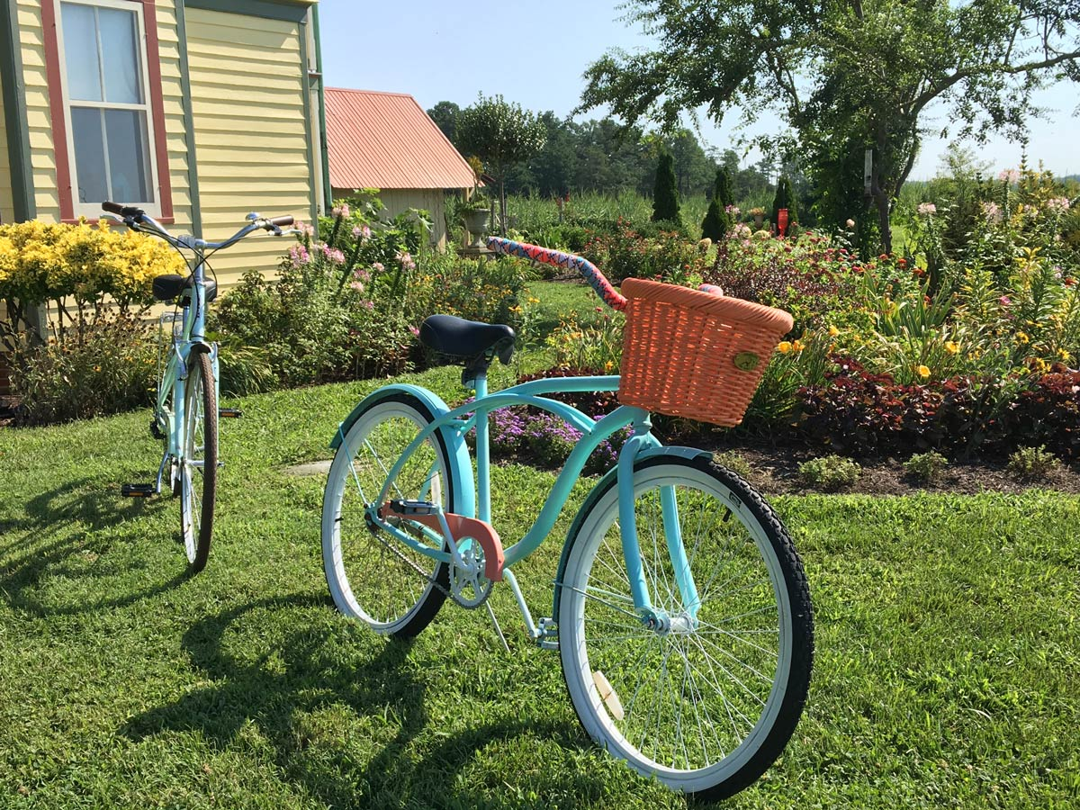 Go for a bike ride in Whitehaven