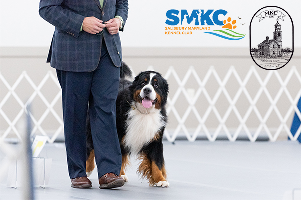 Eastern Shore Classic Dog Shows