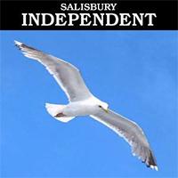 Salisbury Independent