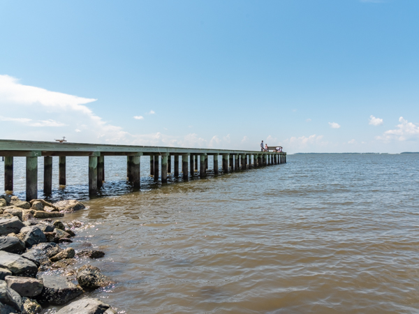 Bivalve Wharf