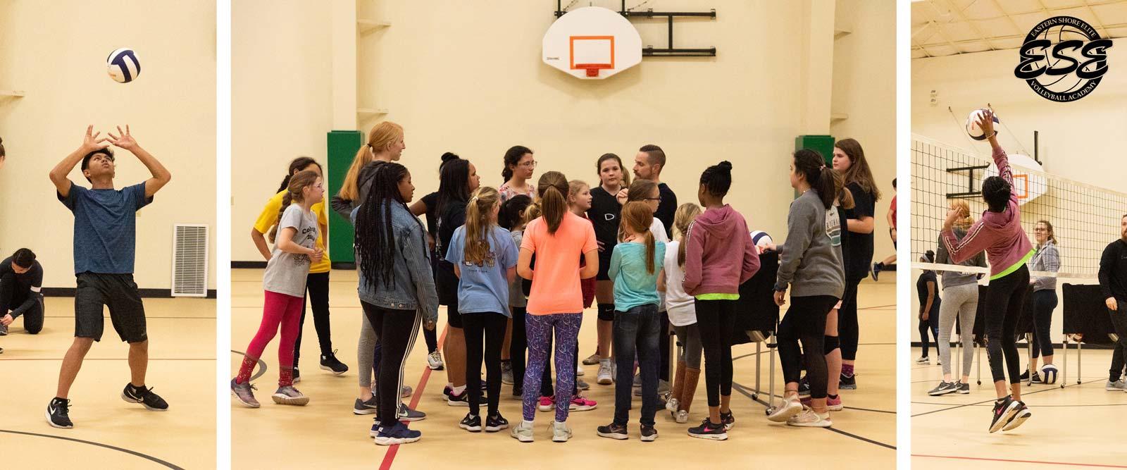 Volleyball - Eastern Shore Elite Volleyball Academy Instructional Program