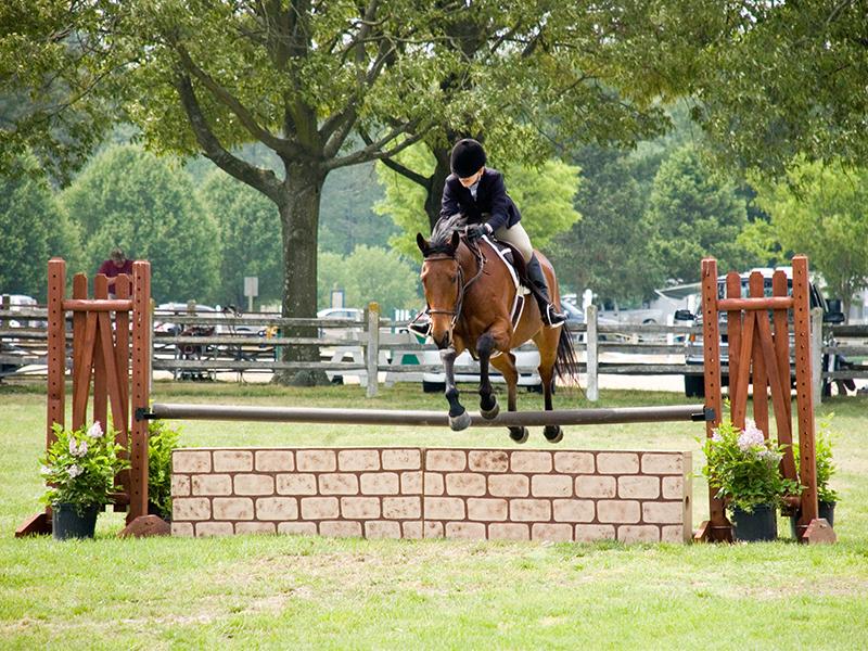 gallery-2232-Wicomico-Equestrian-800x600-1.jpg