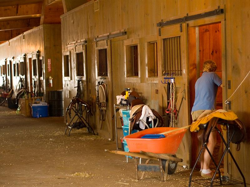 gallery-2232-Wicomico-Equestrian-800x600-4.jpg