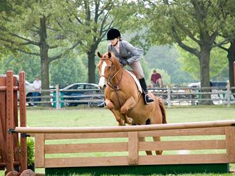 Wicomico Equestrian Center