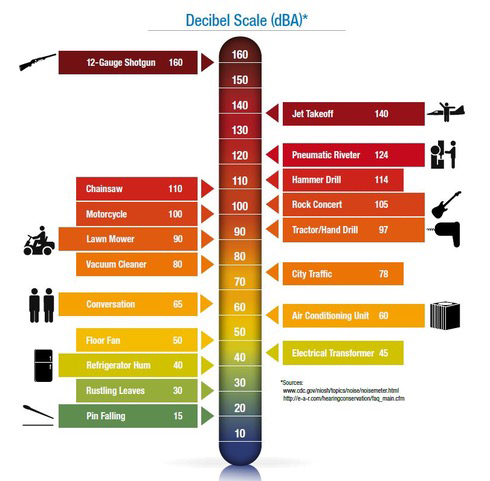 Noise Thermometer