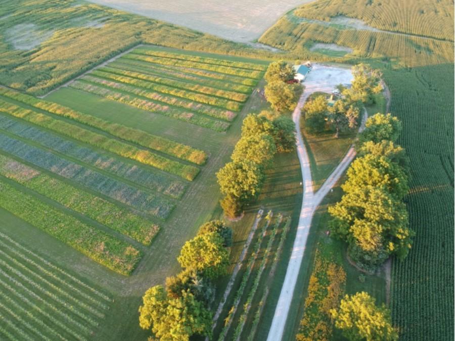 Windmill Creek Vineyard and Winery, Inc.