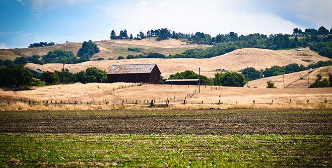 Valley End Farm
