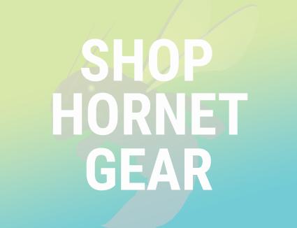 SHOP HORNET GEAR