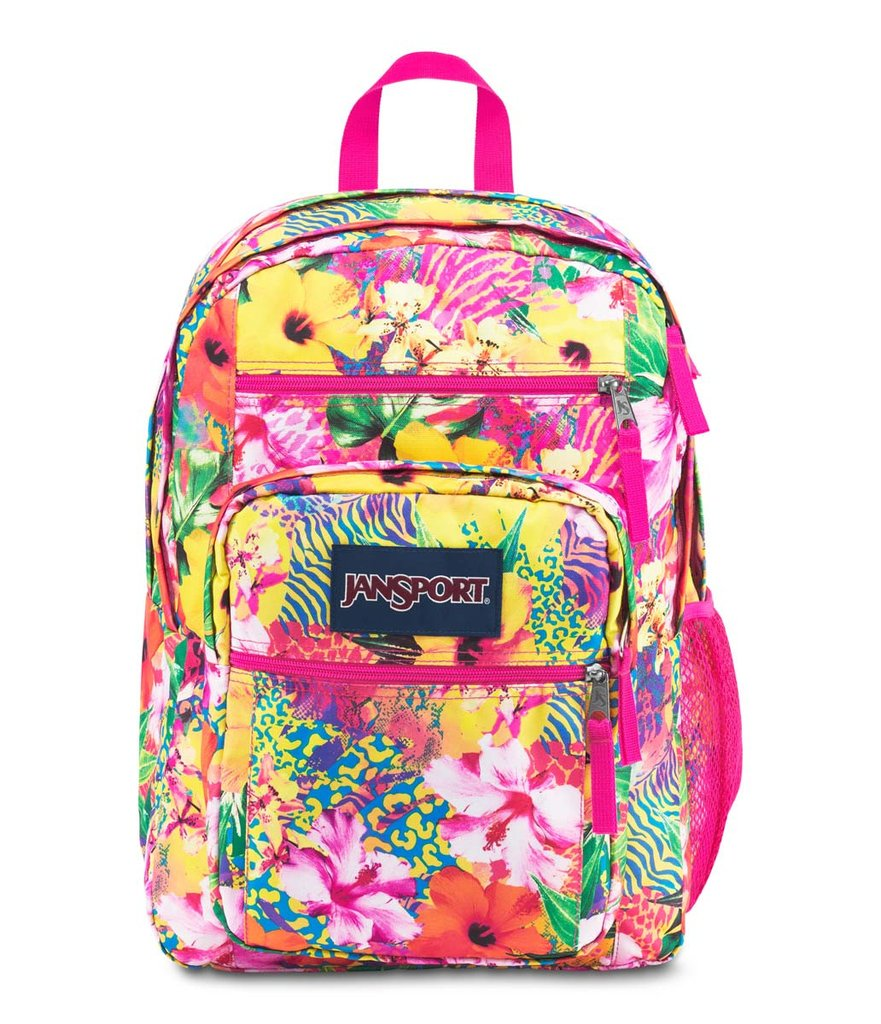 BIG STUDENT STYLE JANSPORT BACKPACK