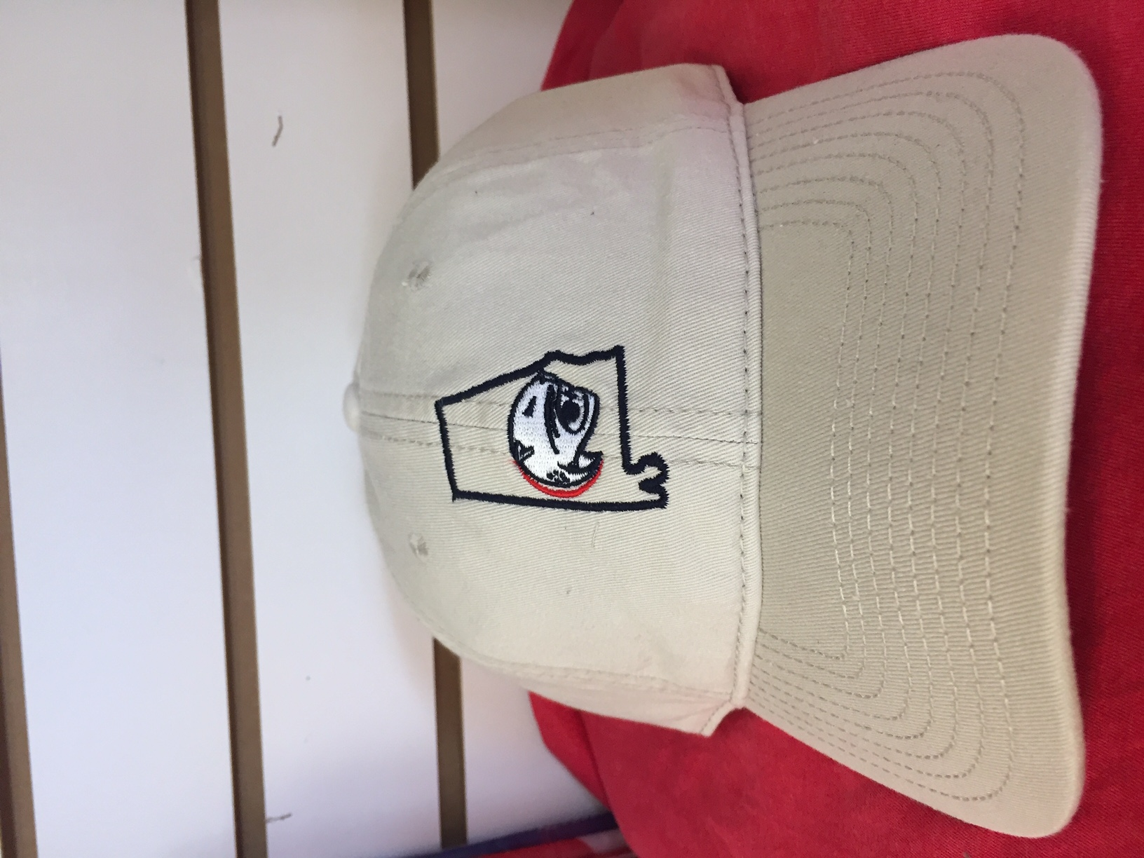 State outline with jag logo hat