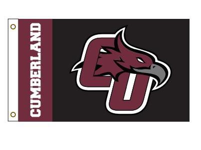 Cumberland CU Logo Flag