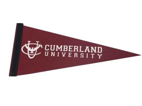 Mini Cumberland University Pennant