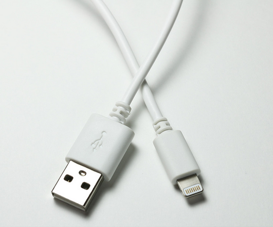 10 FT LIGHTNING CABLE