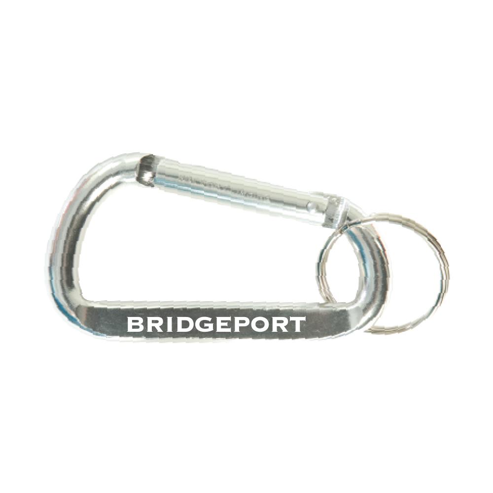 Carabiner Keychain - Silver
