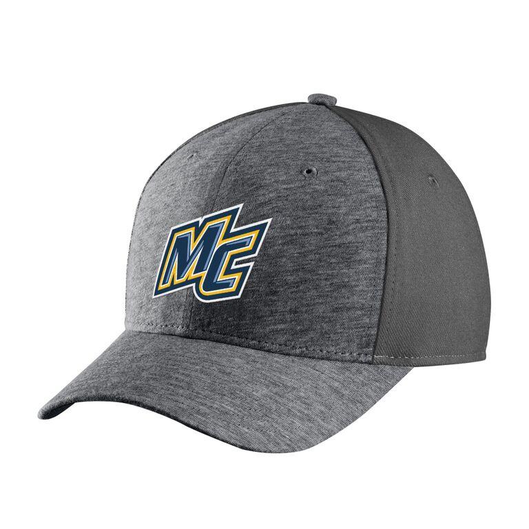 Charcoal  Express Swossh Flex Hat