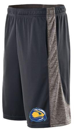 Skyhawk Electron Gym Shorts
