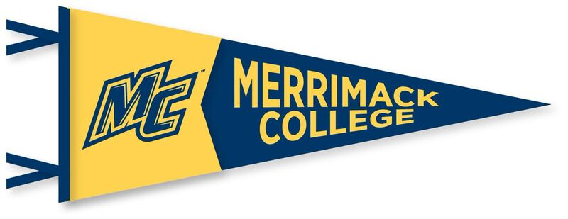 12x30 Gold & Navy Pennant