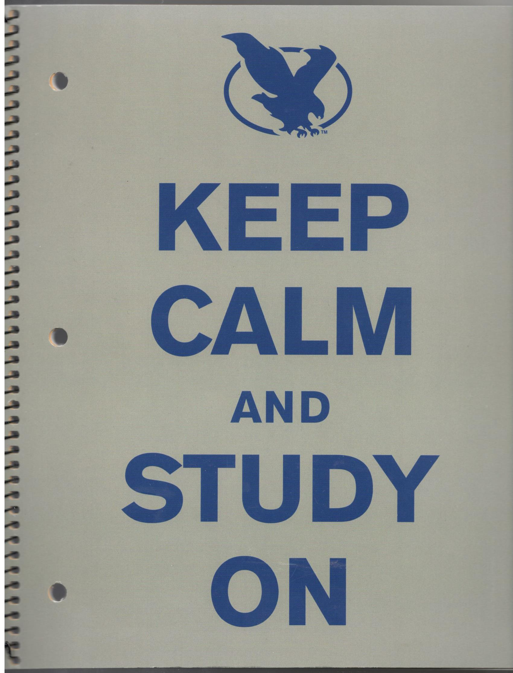 """Keep Calm and Study ON"" 1-Subject Notebook"