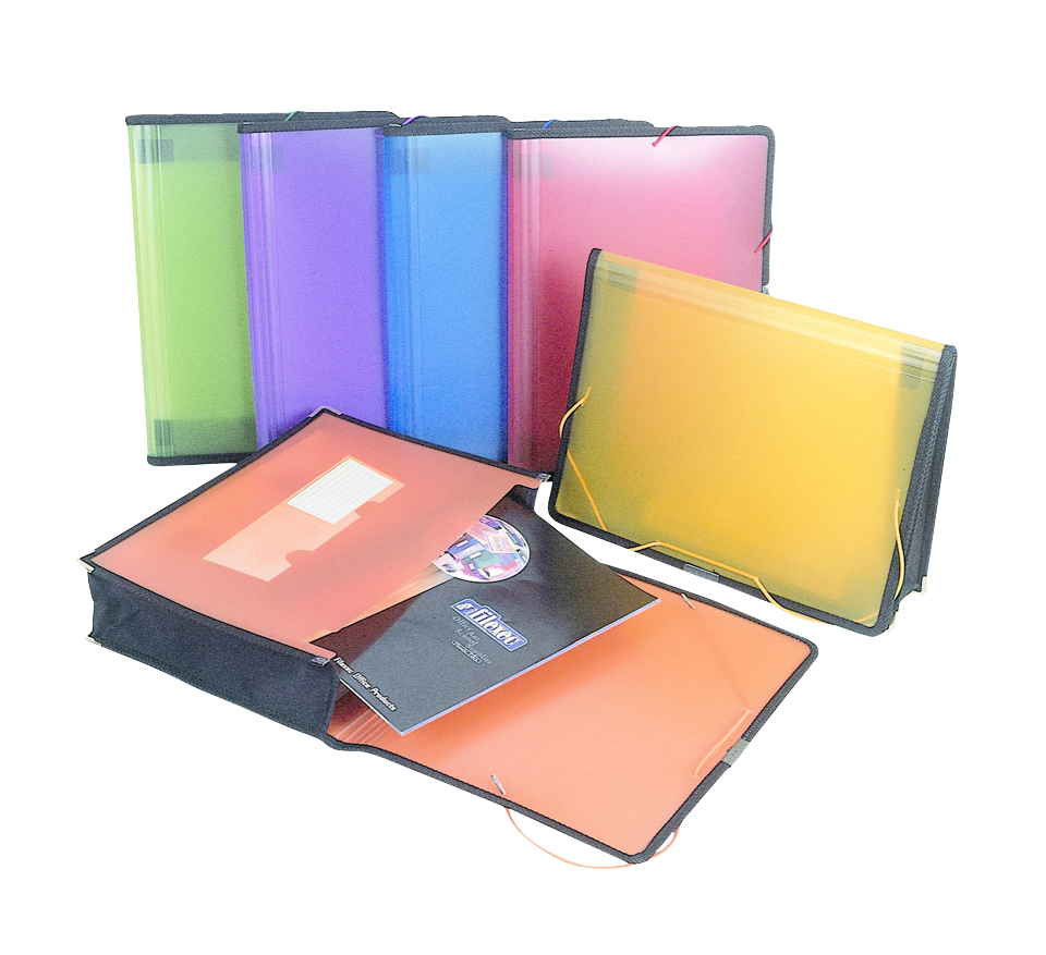 Filexec Expandable Pocket Folder - Asst 9.75x13in Bulk 3in Capacity-Frosted