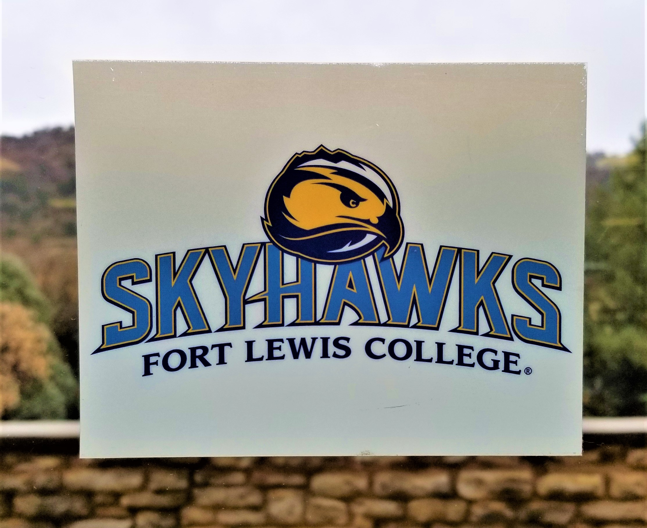 FLC Skyhawks Decal with Mascot