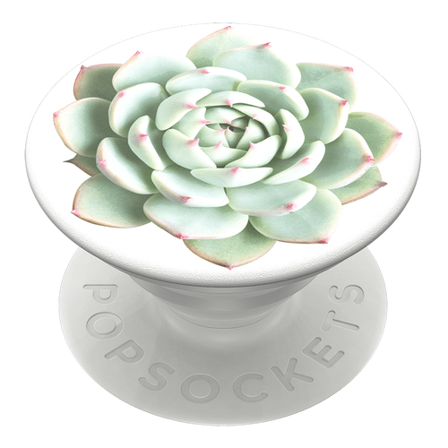It's Succulent Swappable PopSocket