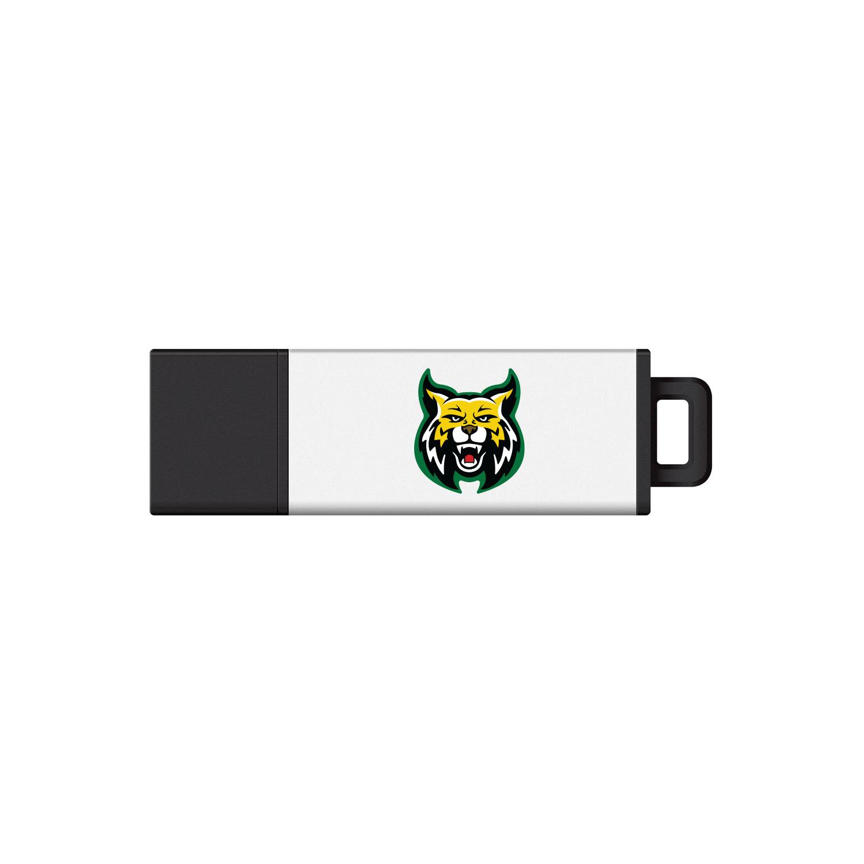Wildcat Logo USB