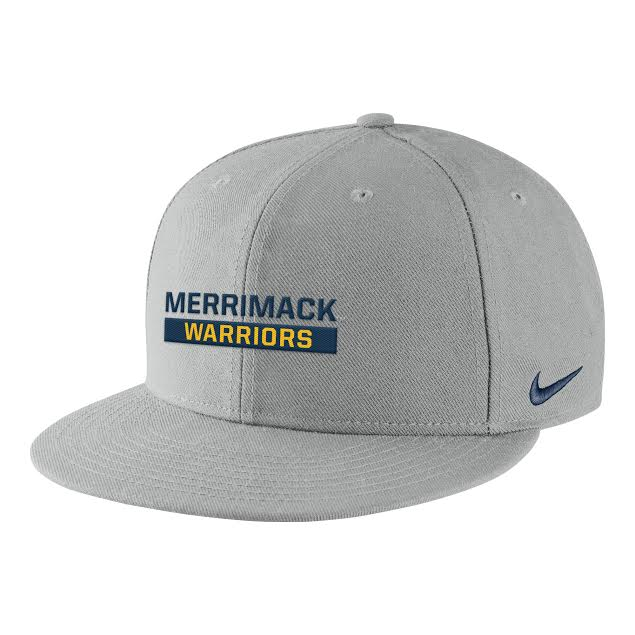 Nike Pewter Gray Core Snapback