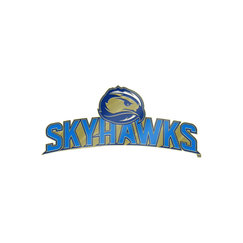 Brass Skyhawks Lapel Pin