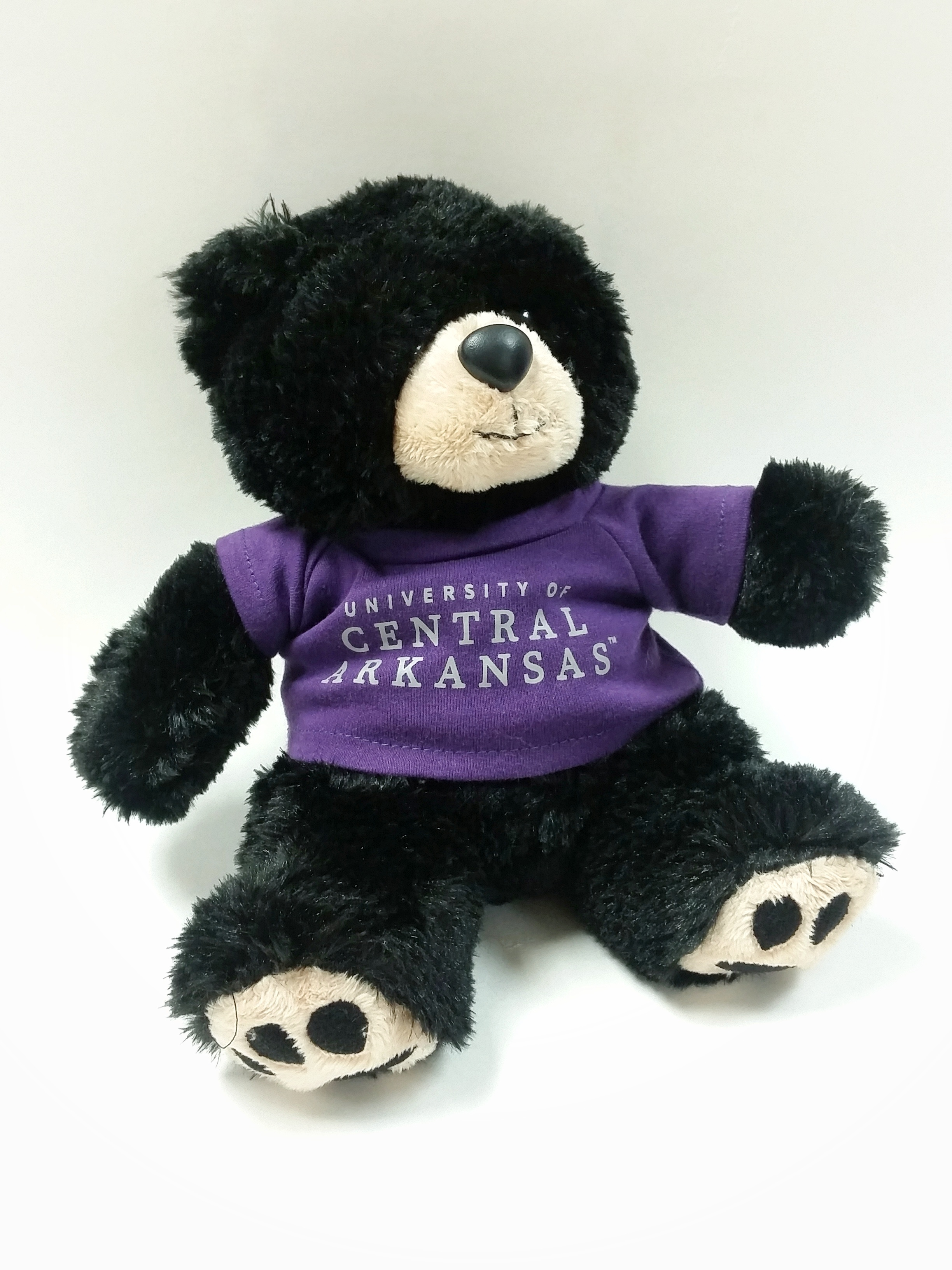 UCA Cooper Teddy Bear