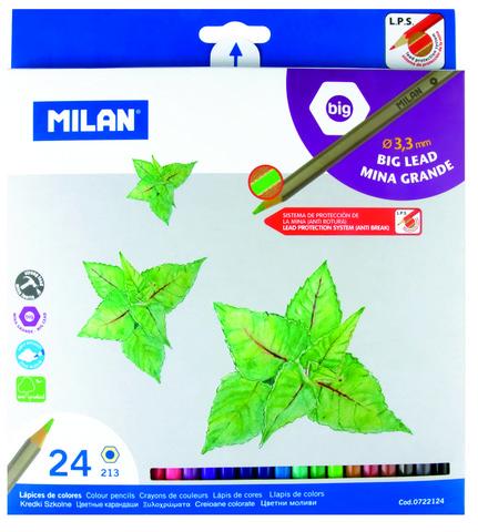 Professional Colored Pencil Set/24